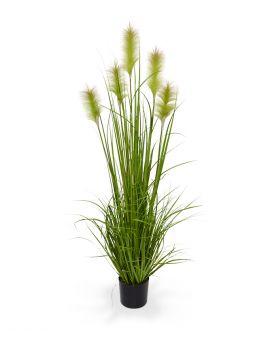 Sfeer in je kantoor met maxifleur kunstplanten